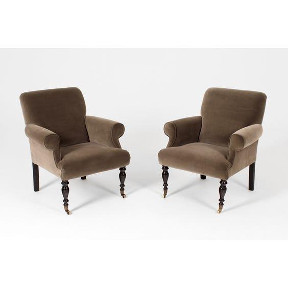Mushroom grey velvet armchair image