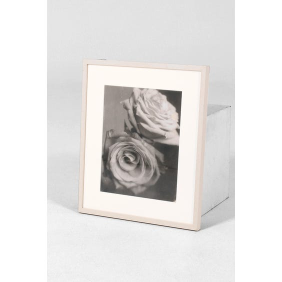 SBS B&W roses photograph image