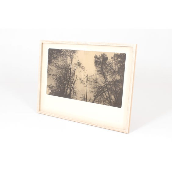 Large sepia two-image tree print image