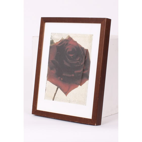 Photograph print of red rose image