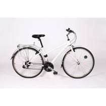 Modern pearlised white mountain bike