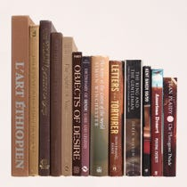 Example of brown books