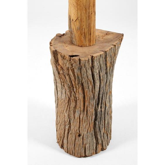 Primitive tree coat stand image