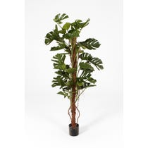 Large artificial cheese plant