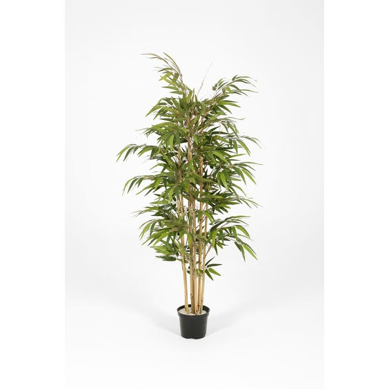 Artificial Japanese bamboo plant image