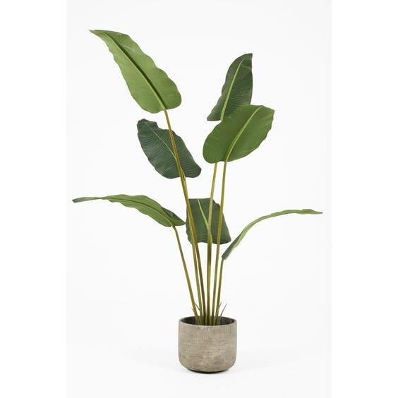 Artificial bird of paradise plant image