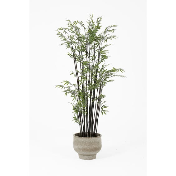 Artificial black stemmed bamboo tree image