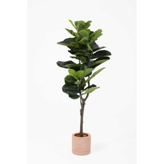 Artificial fiddle leaf fig tree image