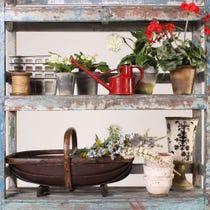 Example of rustic garden accessories