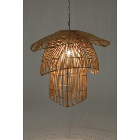Tiered rattan pendant lamp image