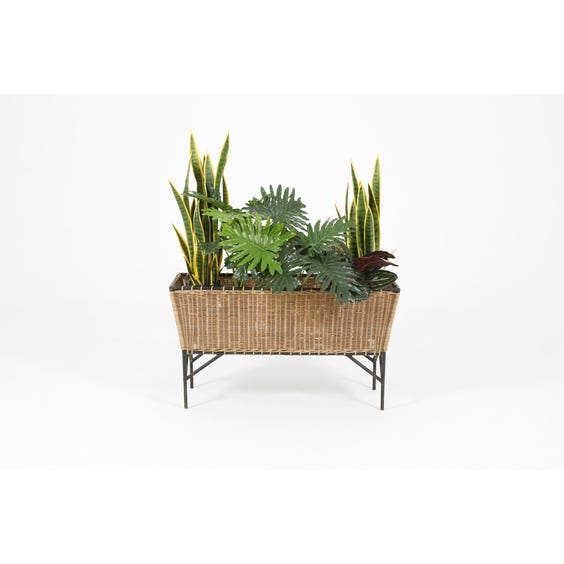 Midcentury rattan trough plant stand image