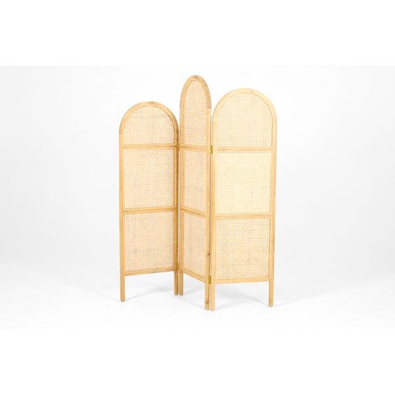 Rattan and bleached wooden screen image