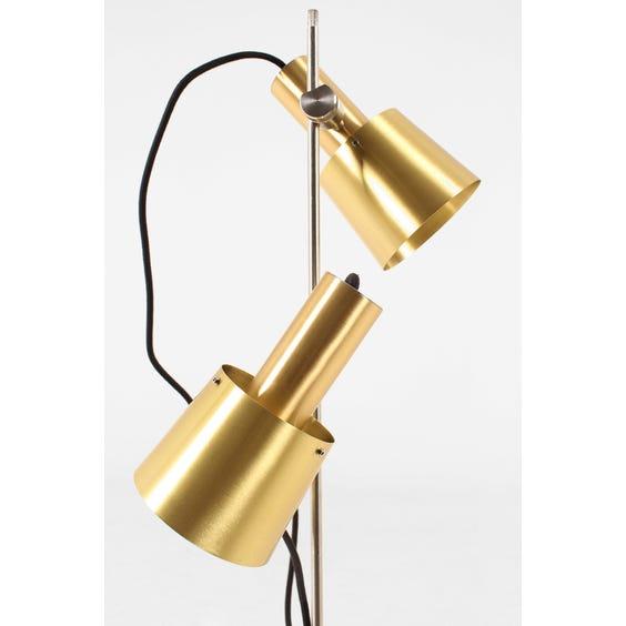 Brass twin head standard lamp image