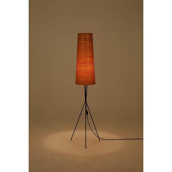 Midcentury black tripod standard lamp image