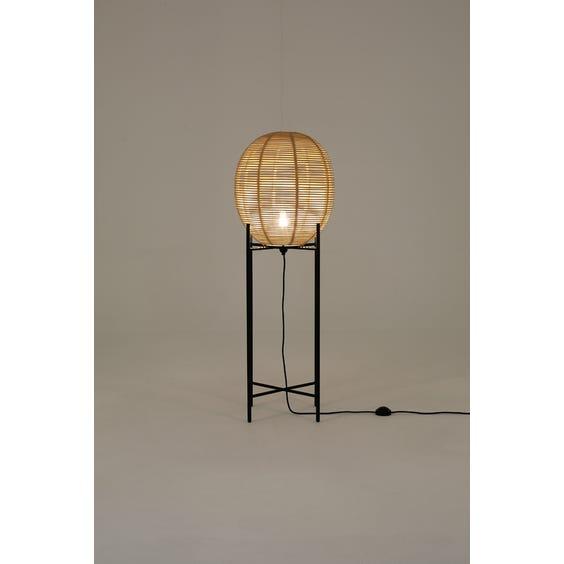 Medium rattan egg lamp image