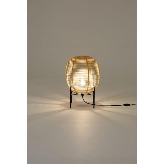 Small rattan egg lamp image