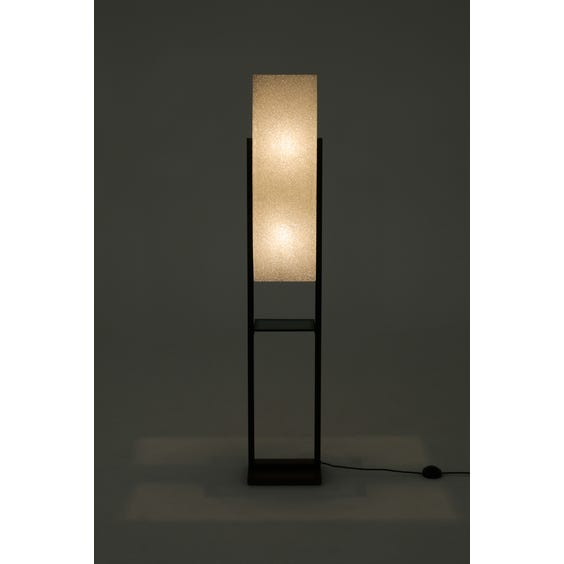 Midcentury crackled ice resin lamp image
