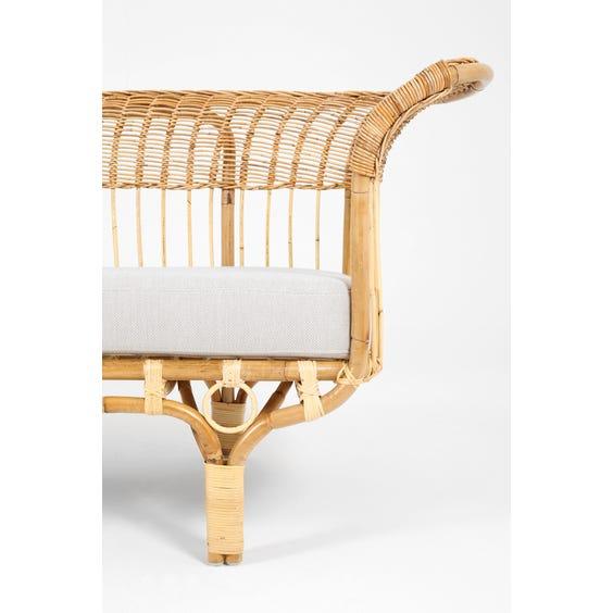 Midcentury rattan Albini sofa image