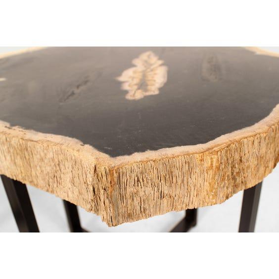 Miocene petrified wood side table image