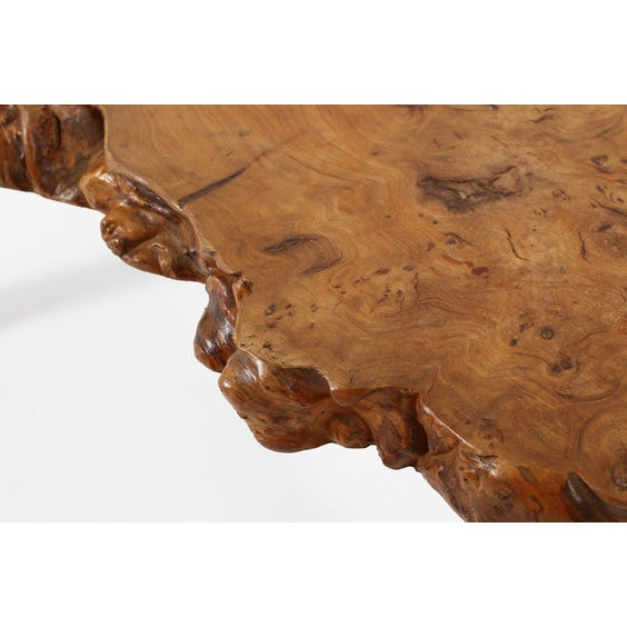 Midcentury French burr elm table  image