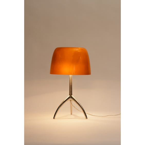 Brown opaque glass chrome lamp image