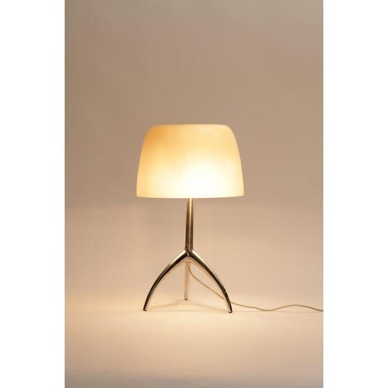 Mushroom opaque glass chrome lamp image