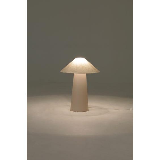 Pale powder pink table lamp image